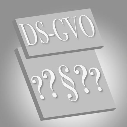 Dvf News